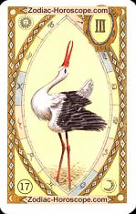 The stork astrological Lenormand Tarot
